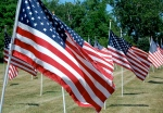 Line of flags in cemetery